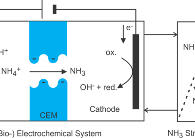 (Bio)electrochemical ammonia recovery: progress and perspectives